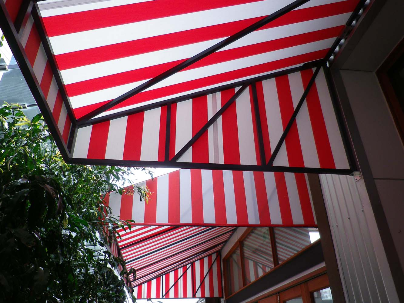 FRENCH CANOPY 3